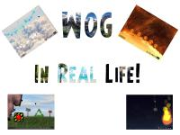 WOG In Real Life